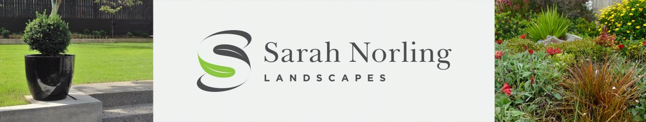 Sarah Norling Landscapes
