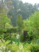 A heron appears to take flight at Puketarata garden. This is a garden that uses its surroundings to great effect.