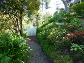 This New Plymouth garden shows what can be done with a shady bank behind the house. The path and gate are cleverly used to make the garden feel larger. Beyond the gate is all 'borrowed landscape'.