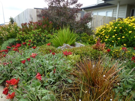 A great mix of natives and exotics  for a statement streetfront planting.