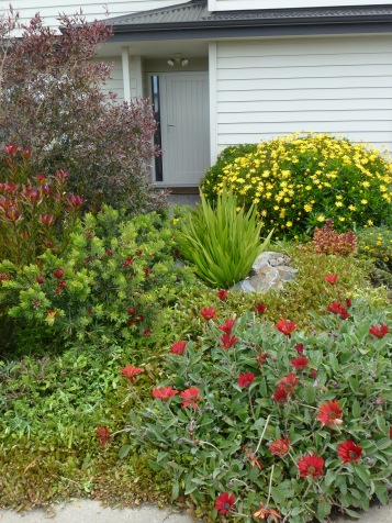 A bold colour scheme of reds, yellows, and orange gives this planting real impact.